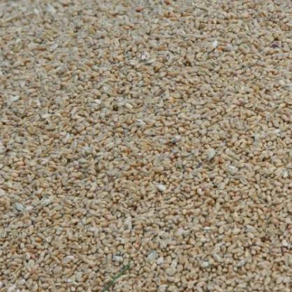 строительный песок фракционированный в нижнем новгороде - фото